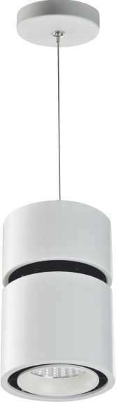 Pendant lights LI-4010-18