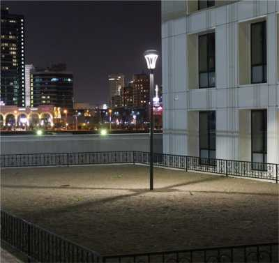 City Lights ANORA